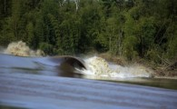 O ano de 2012 promete ser dos mais importantes para o crescimento do surf na pororoca. O Campeonato Brasileiro de […]