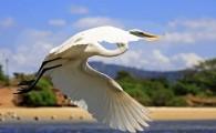 Evento inédito acontece nas melhores ondas do Brasil, entre os dias 07 à 17 de junho, em Niterói. A Prefeitura […]