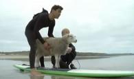 Toda essa loucura começou para promover a marcar de surfwear Finisterre que é ambientalmente amigável. Mildred é uma Bowmont – […]