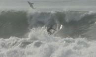 A onda quase mortal rolou na praia de El Porto Beach, em Manhattan Beach, Califórnia. Vídeo mostra um grande tubarão […]