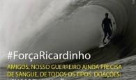 O surfista brasileiro Ricardo dos Santos, de 24 anos, segue internado no Hospital Regional de São José após receber três […]