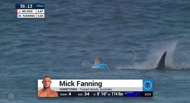 Tubarão ataca Mick Fanning na final do J-Bay Open